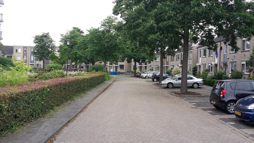 Openbaar haaksparkeren