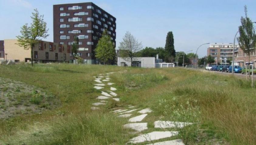 Kansen voor ecologische ontwikkelingen