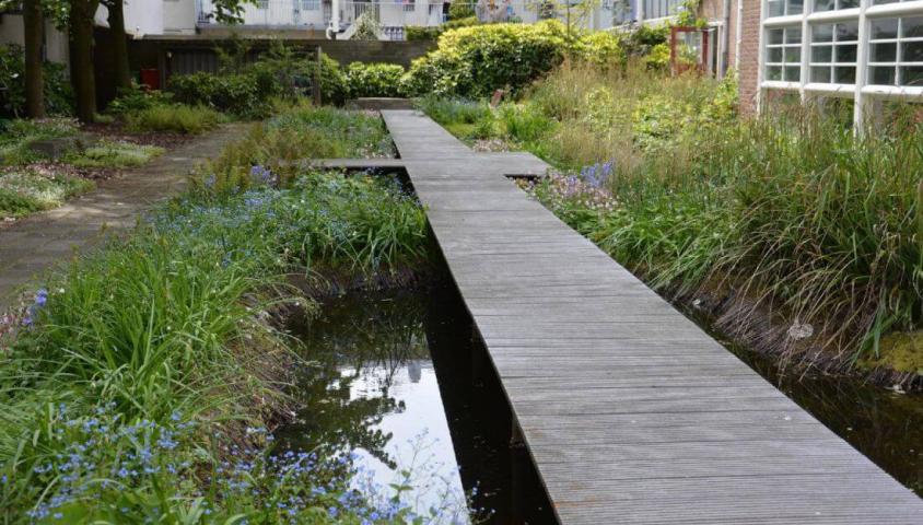 Ecologie tot in de tuin